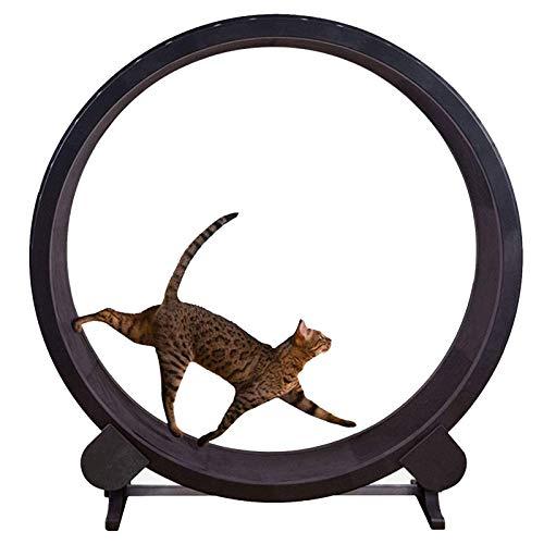 AWYLL Tapis roulant per Cani, Ruota per Esercizi per Gatti per Animali da Corsa Giocattolo Rotante per Gatti Silenzioso Tapis roulant per Gatti con Pista Antiscivolo per Esercizi Indoor per Gatti