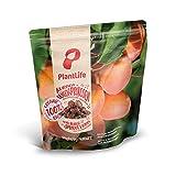 PlantLife Rodajas de albaricoque BÍO 4x1kg – albaricoques naturales – crudos – sin hueso y secados al sol - 100% reciclable