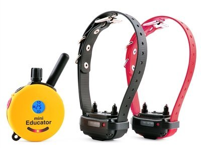 Educator ET-302 Two Dog Mini 1/2 Mile E-Collar Remote Dog Training Collar With Vibration, Tapping Sensation and Pavlovian Stimulation