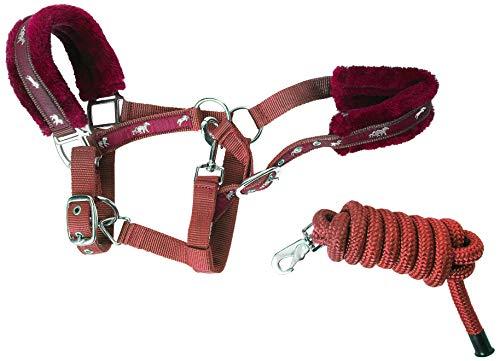 cwell Paarden New Equine Print bont gevoerde halter) houder + bijpassende lijnen Bourgondië COB
