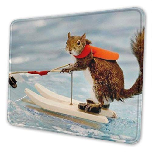 Wasserski Fuchs Eichhörnchen Mousepad PC Computer Laptop Schreibtisch Pad Tastaturmatte rutschfeste Basis, Für Arbeit Büro Home Gaming Mauspad