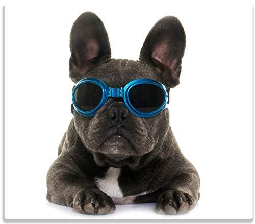 Wallario Herdabdeckplatte/Spritzschutz aus Glas, 1-teilig, 60x52cm, für Ceran- und Induktionsherde, Cooler Hund mit Sonnenbrille in blau - Französische Bulldogge