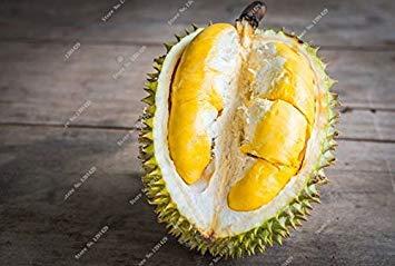 Vistaric 2016 neue köstliche süße snacks importiert Durian samen tropische früchte Freies Verschiffen 5 teile/beutel