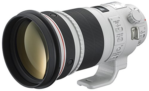 Canon EF 300mm f/2.8L IS II USM - Objetivo EF 300 Mm F/2,8L Is II USM para EOS