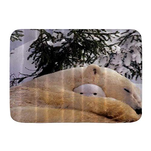 AIKIBELL lfombra de baño,Oso Polar Arte Madre y babay,Alfombra de baño Alfombra...