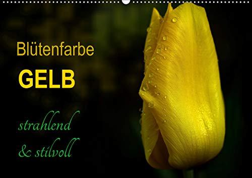 Blütenfarbe GELB (Wandkalender 2021 DIN A2 quer)