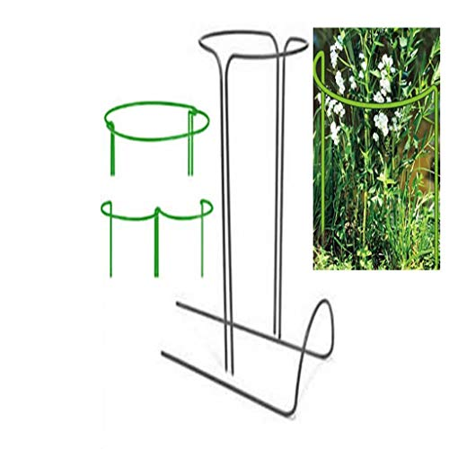 KWS Plant Support Rods,2-Pack, Semicircular Garden Plant Supports Made of Metal,The Flower Stand Is Suitable for Climbing on Clematis,Roses and Other Plants on The Garden Balcony,W35CM*H70CM