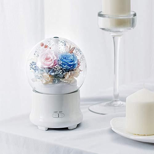 DAMAI STORE Kreative Immortal Blumen-Aroma Luftbefeuchter/In-Kind Geburtstag/Geschenke/Werbegeschenke (Color : Blue)