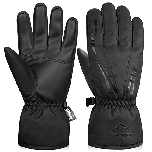 LANYI Winter Gloves for Women Waterproof Thermal Mens Gloves Thinsulate Ski Snowboard Driving...
