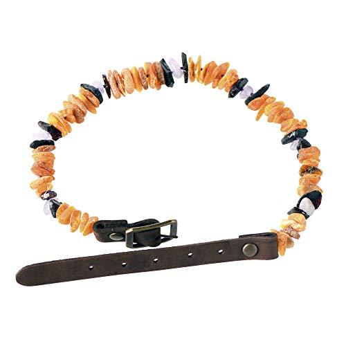 Haustierhalsband aus baltischem Bernstein - Halsband aus Bernstein und Amethyst für Hunde und Katzen - gegen Flöhe und Zecken (20-25cm)