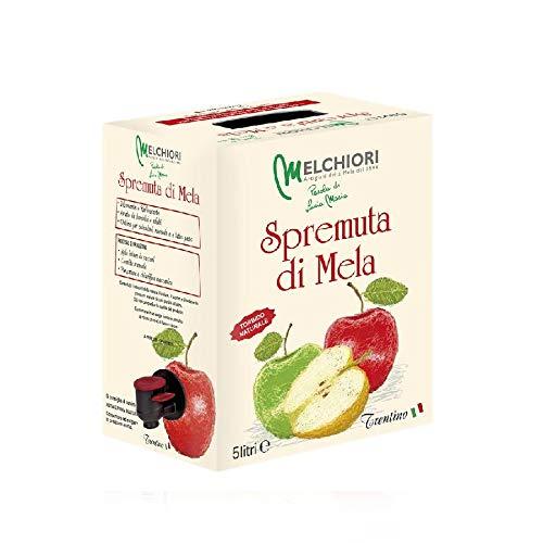 Succo di mele trentine 100% formato 5 L | Lucia Maria Melchiori