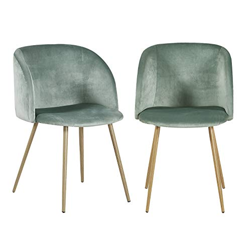 H.J WeDoo Modern Vanity Chairs Set of 2 Velvet Bedroom Chairs Mid Century Armchairs Dining Chairs for Living Room, Cactus Green