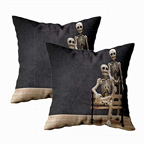 Juego de 2 fundas de almohada para exteriores, 45,7 x 45,7 cm, diseño de esqueletos, decoración del hogar, fundas de almohada con cremallera para sofá