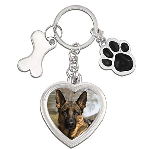 Gwnuqpa Dog Memorial Gifts of Dog Keychain Insert Loss of Dogs Or Cats Picture Frame for Sympathy Gift with Dog Paws and Dog Bone Tags Key Rings (Love)