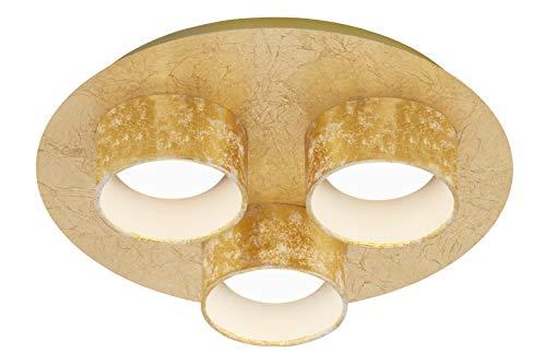 Briloner Leuchten - Lámpara LED de techo (3 focos, 5 W, 400