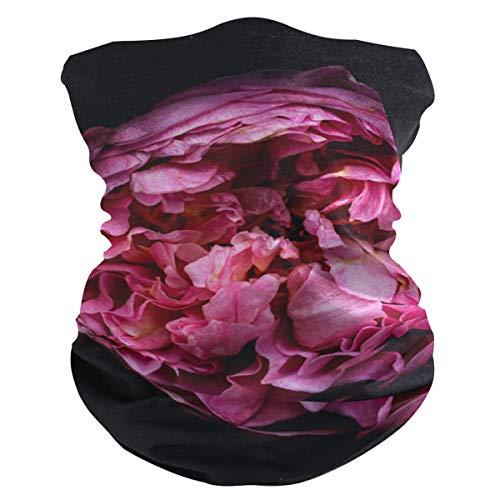 Pasamontañas AJINGA para la cara, máscara antipolvo, máscara facial para mujer con bolsillo interior, 2 piezas de filtro, polainas para el cuello de acercamiento rosa, color Multicolor 1, tamaño talla única