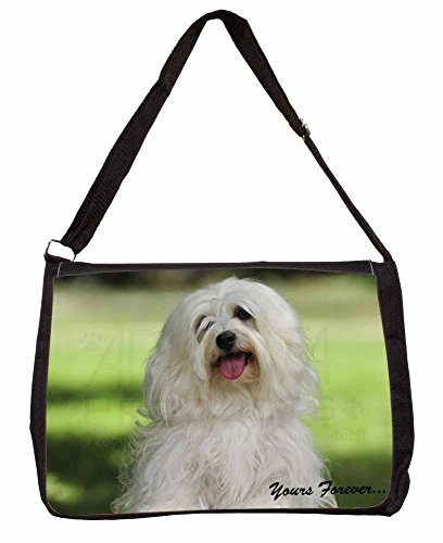 Havanese Dog 'Yours Forever' Large 16