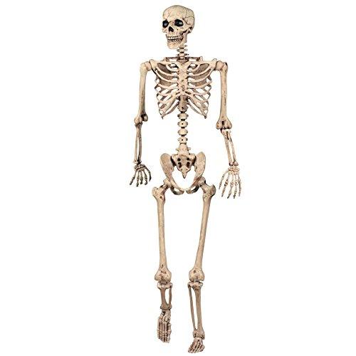 SHATCHI Decoración de Halloween, Esqueleto Posible, decoración de la Vida, tamaño 165 cm, para Fiestas, Paseos