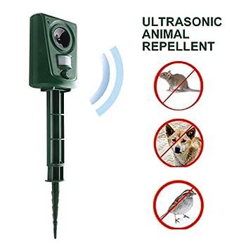 Répulsif Animal Répulsif Chat Chien Ultrason Batterie avec Capteur PIR, Imperméable à l'eau, Portée Efficace 8m, Alimentation par Batterie