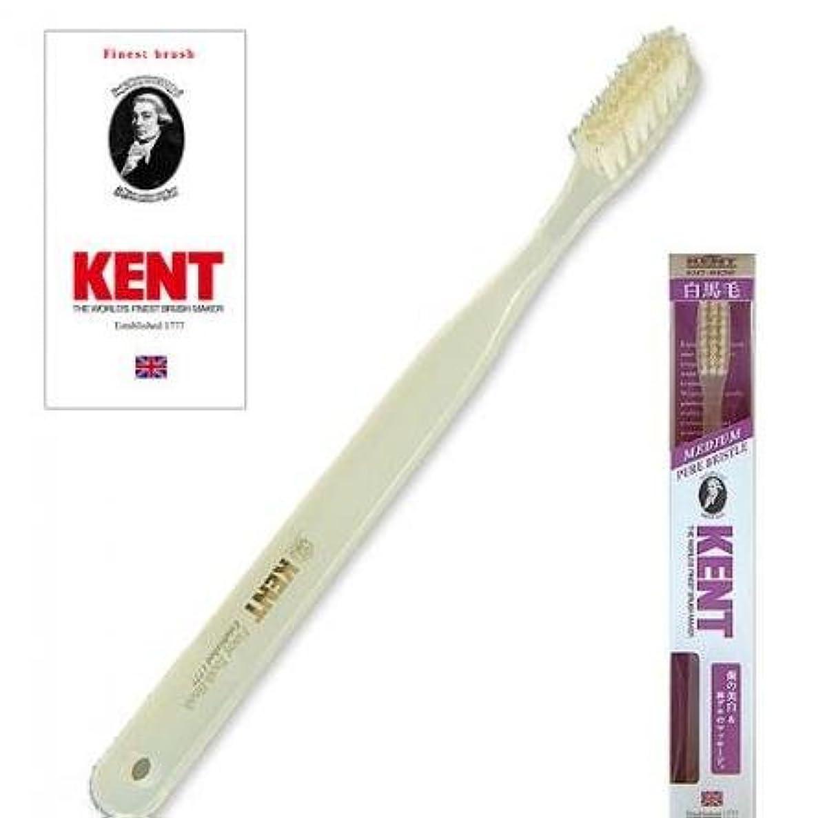 幸運な引き潮用量KENT(ケント) 白馬毛歯ブラシ ラージヘッド ふつう 2本セット