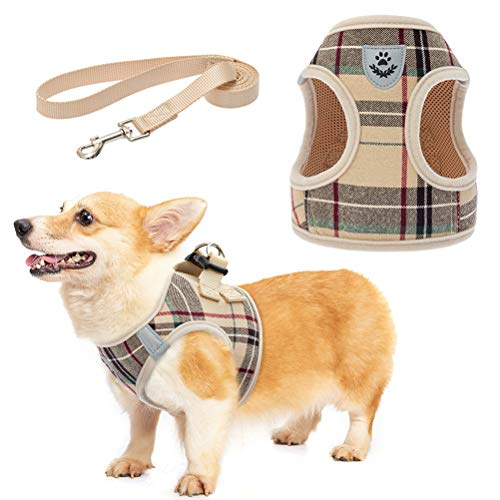 Soft Mesh Plaid Puppy Harness - Small Dog Harness and Leash Set, Adjustable & Comfortable Padded Reflective Vest for Puppies and Small Breeds Dogs Walking