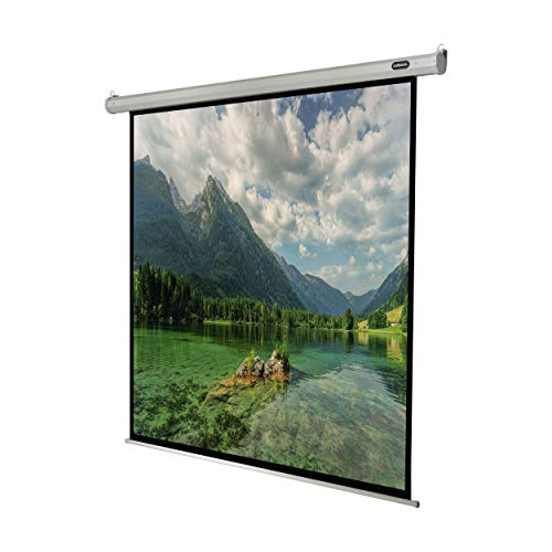 celexon Pantalla motorizada para HomeCinema y presentaciones- proyector Pantalla de Pared o de Techo eléctrica Motor Economy - 300 x 300 cm - 161' - 1:1
