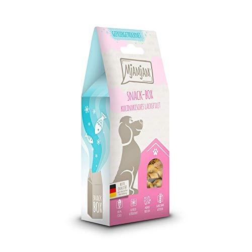 MjAMjAM - Premium Snackbox für Hunde - kulinarisches Lachsfilet, 1er Pack (1 x 100 g)