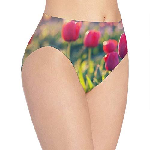 XCNGG Höschen Damenunterwäsche 3D Print Soft Women's Underwear, Tulip Fields Fashion Flirty Lady's Panties Briefs Medium