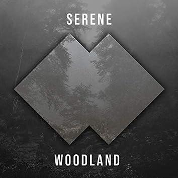 # Serene Woodland