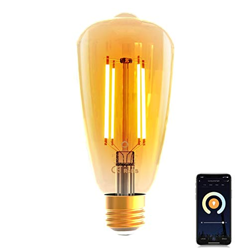 WLAN Glühbirne Alexa,Lumary Wi-Fi Smart Edison Vintage Glühbirnen LED E27,7W ersetzt 70W LED Birne Lampe,Dimmbar Warmweiß Kaltweiß 1800K-5000K Retro Glühlampe kompatibel mit Echo,Google Home,700LM