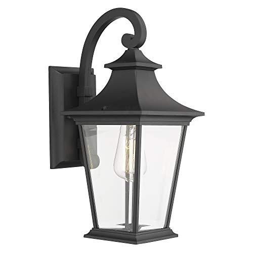 Emliviar Outdoor Wall Lantern, 1-Light Exterior Wall Mount Light with Clear Glass in Black Finish, 18