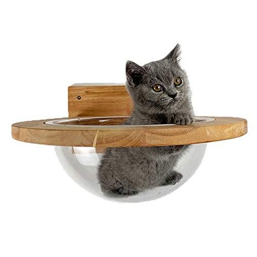 ZWW Katzen Wand Kratzbaum, Transparentes Raumkapsel-Katzenbett Massivholz Katzen Wandzubehör Aktivitätszentrum Für Moderne Möbelspiele