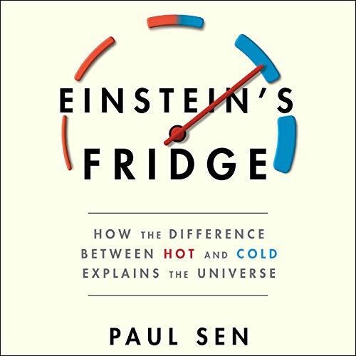 Einstein's Fridge audiobook cover art