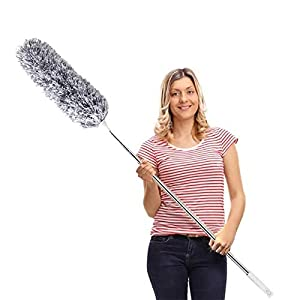 DELUX Extendable Duster