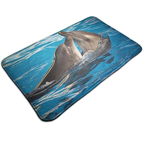 Aqua Show Pair of Valentines Dolphins Dancing In Pool Animal Tenderness Love 36 x 24in, Extra Soft and Absorbent Rugs, Machine Wash Dry, Perfect Plush Carpet Mats for Tub, Shower,and Bath Room
