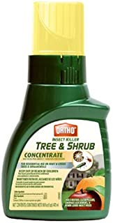 Best tree and shrub 16 oz concentrate insect killer Reviews
