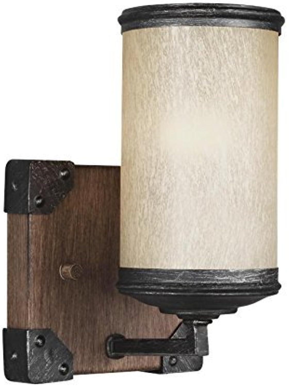 Sea Gull Lighting 4113301-846 One 4113301-846-One Light Wall Bath Sconce