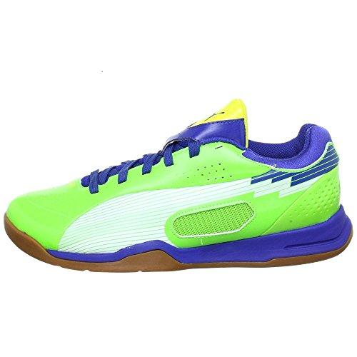 Puma Puma Evospeed Indoor 3 Fussballschuhe Hallenschuhe verschiedene Farben, Farbe:grün;Schuhgröße:EUR 46.5