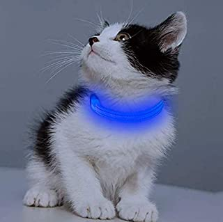 Clan_X Led Dog Collar, USB Rechargeable Lighted Collar for Small Dogs, Glow in Dark, Reflective Collars Keep Your Puppy Visible & Safe