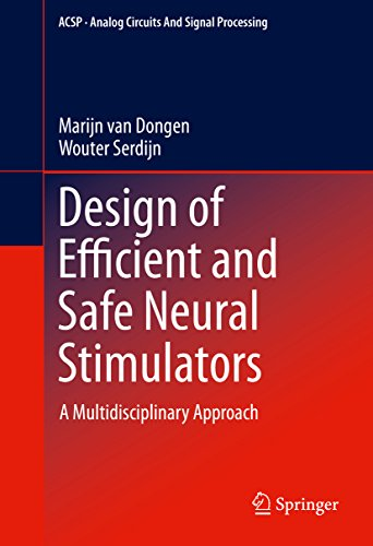 Design of Efficient and Safe Neural Stimulators: A Multidisciplinary Approach (Analog Circuits and Signal Processing) (English Edition)