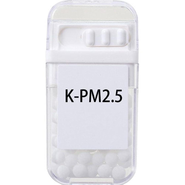 郵便番号サンプルワゴンホメオパシージャパンレメディー K-PM2.5  (大ビン)