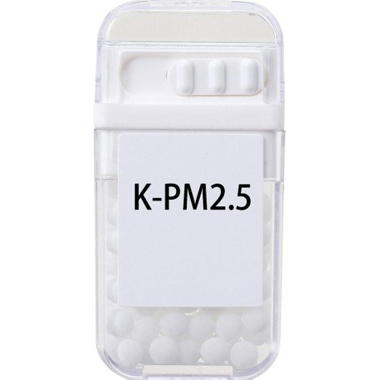 液化する困難入り口ホメオパシージャパンレメディー K-PM2.5  (大ビン)