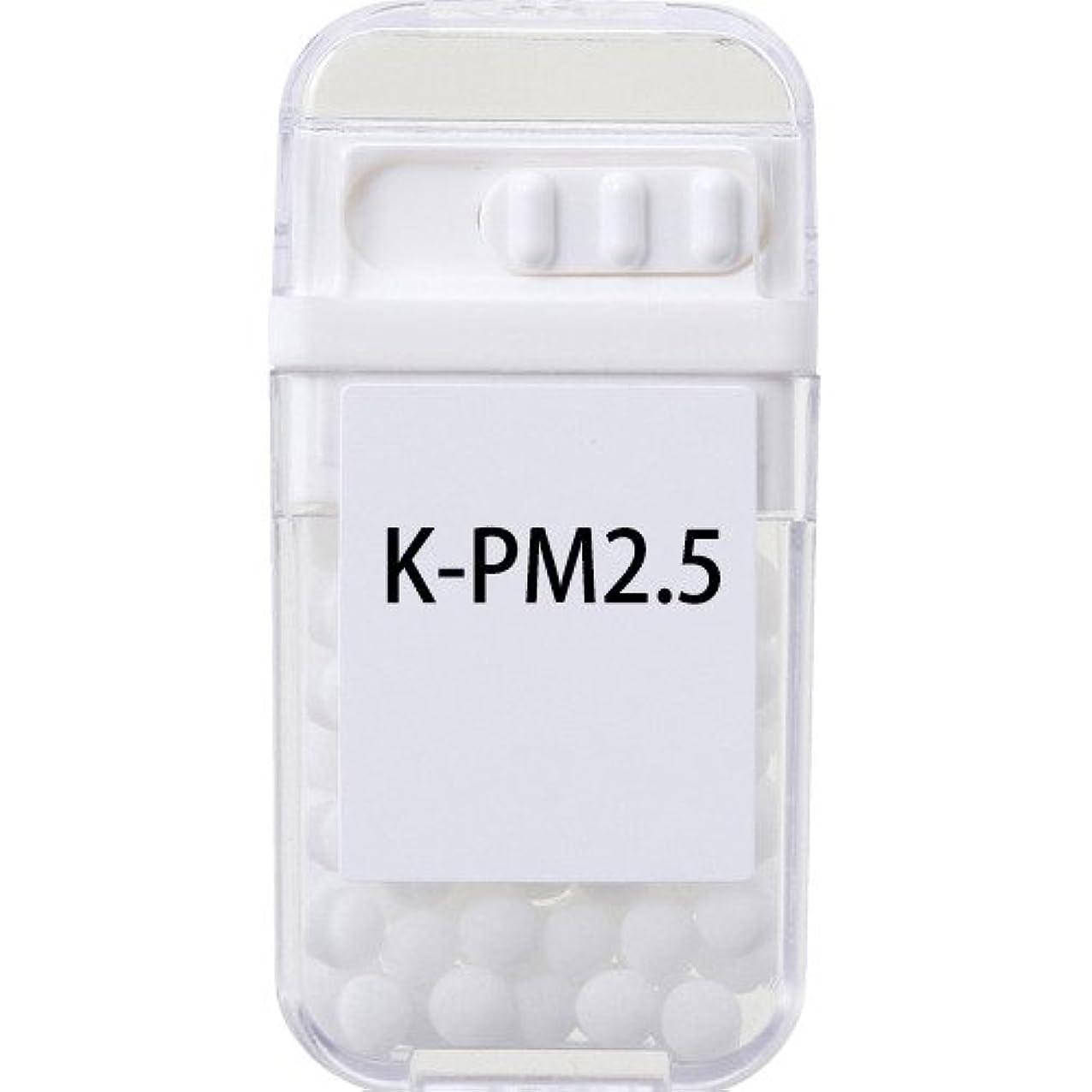 ためらうラウズ極めて重要なホメオパシージャパンレメディー K-PM2.5  (大ビン)