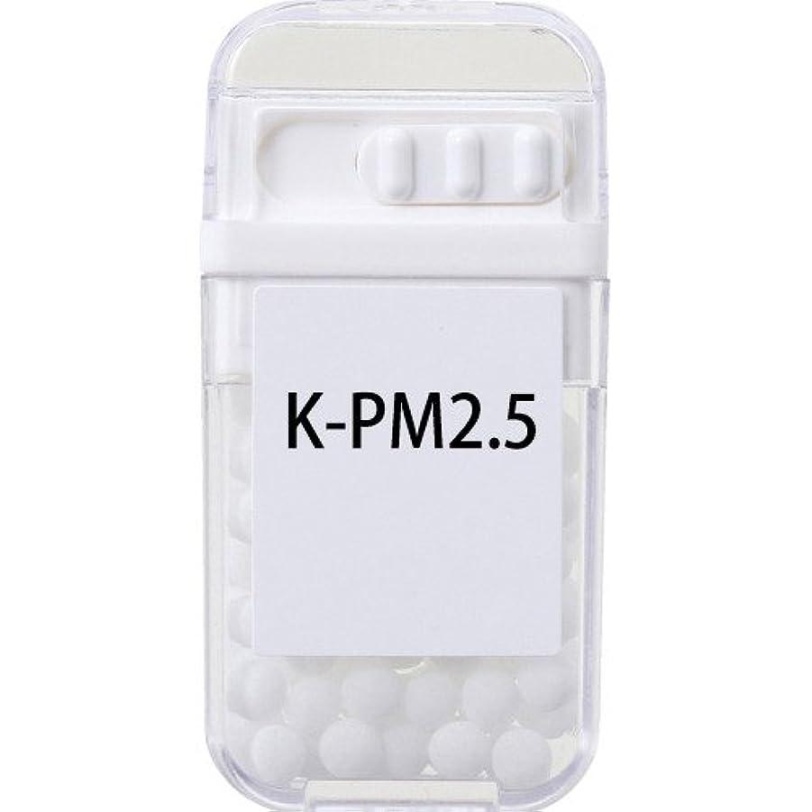 きれいにイブニング印象ホメオパシージャパンレメディー K-PM2.5  (大ビン)