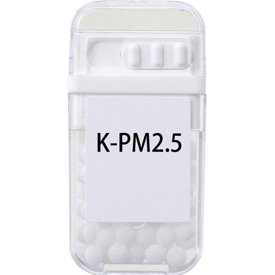 認識プラス挨拶するホメオパシージャパンレメディー K-PM2.5  (大ビン)