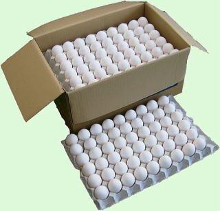 国産鶏卵10kg詰 白玉2Lサイズ [その他]