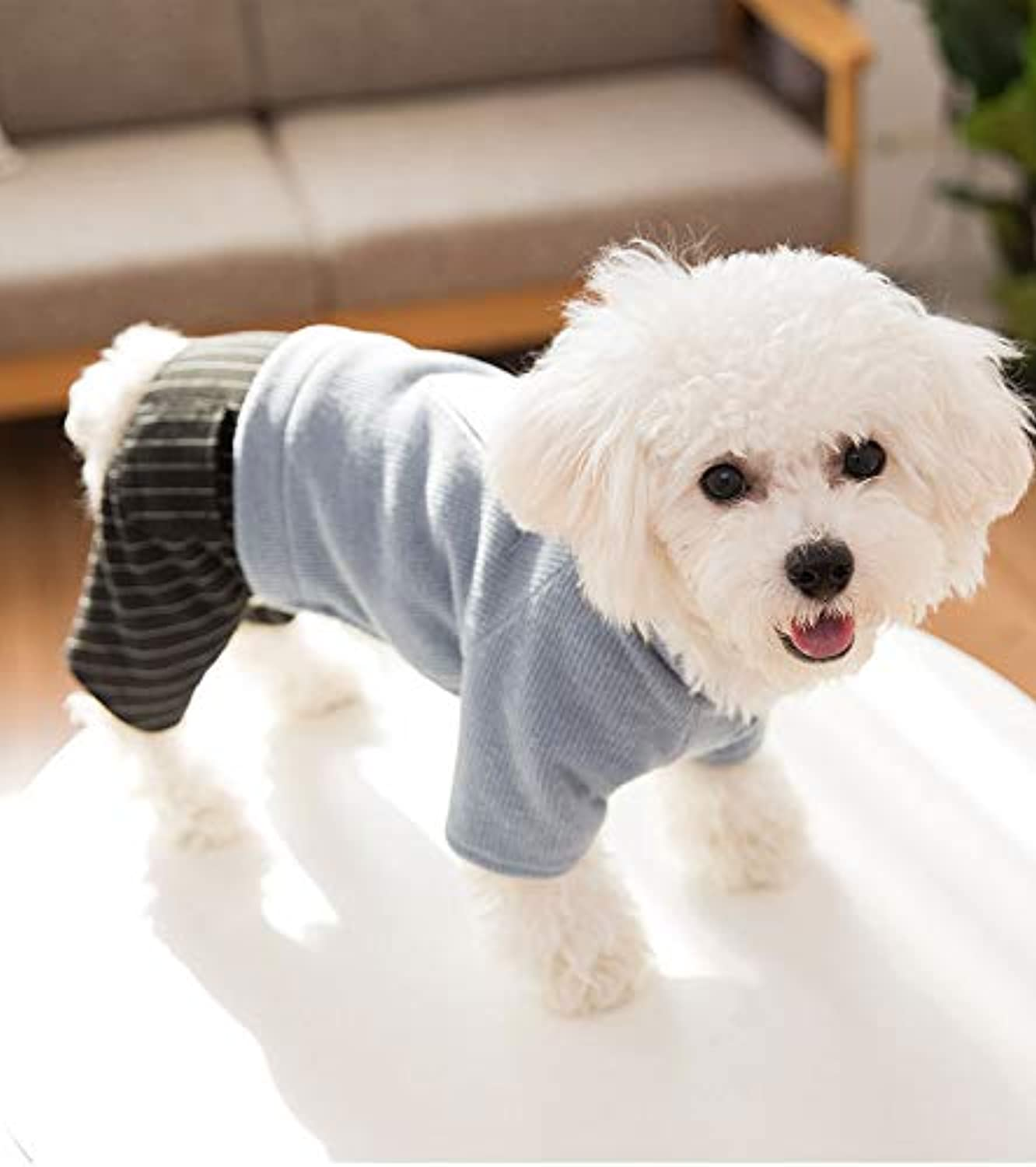 Ferza PetSuppliesMisc New Japan and South Korea dog clothes autumn and winter Teddy Bomi than bear cotton coat small dog pet clothing fourlegged clothes winter (color   bluee, Size   L)
