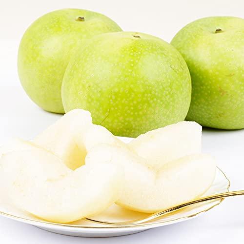梨 鳥取産 二十世紀梨(10kg) 青梨の王様 にじゅっせいき なし 和梨 果物 フルーツ 国華園