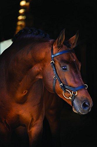 Horseware Rambo Micklem Multibridle 3 in 1 Trense braun wählbare Größe (Standard Horse)