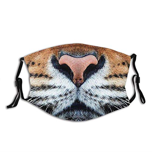 Tiger Men's Women's Teen's Washable Funny Tiger Animal Mouth Breathable Protection for Outdoor Indoor